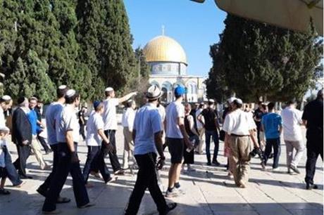211 مستوطنا يقتحمون باحات المسجد الأقصى المبارك
