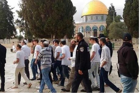 79 مستوطنا وطالبا يهوديا يقتحمون الأقصى